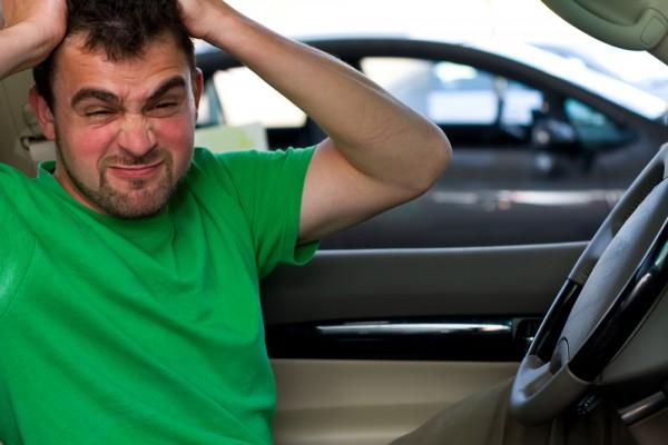 3 3 - Устранение сверчков в салоне автомобиля
